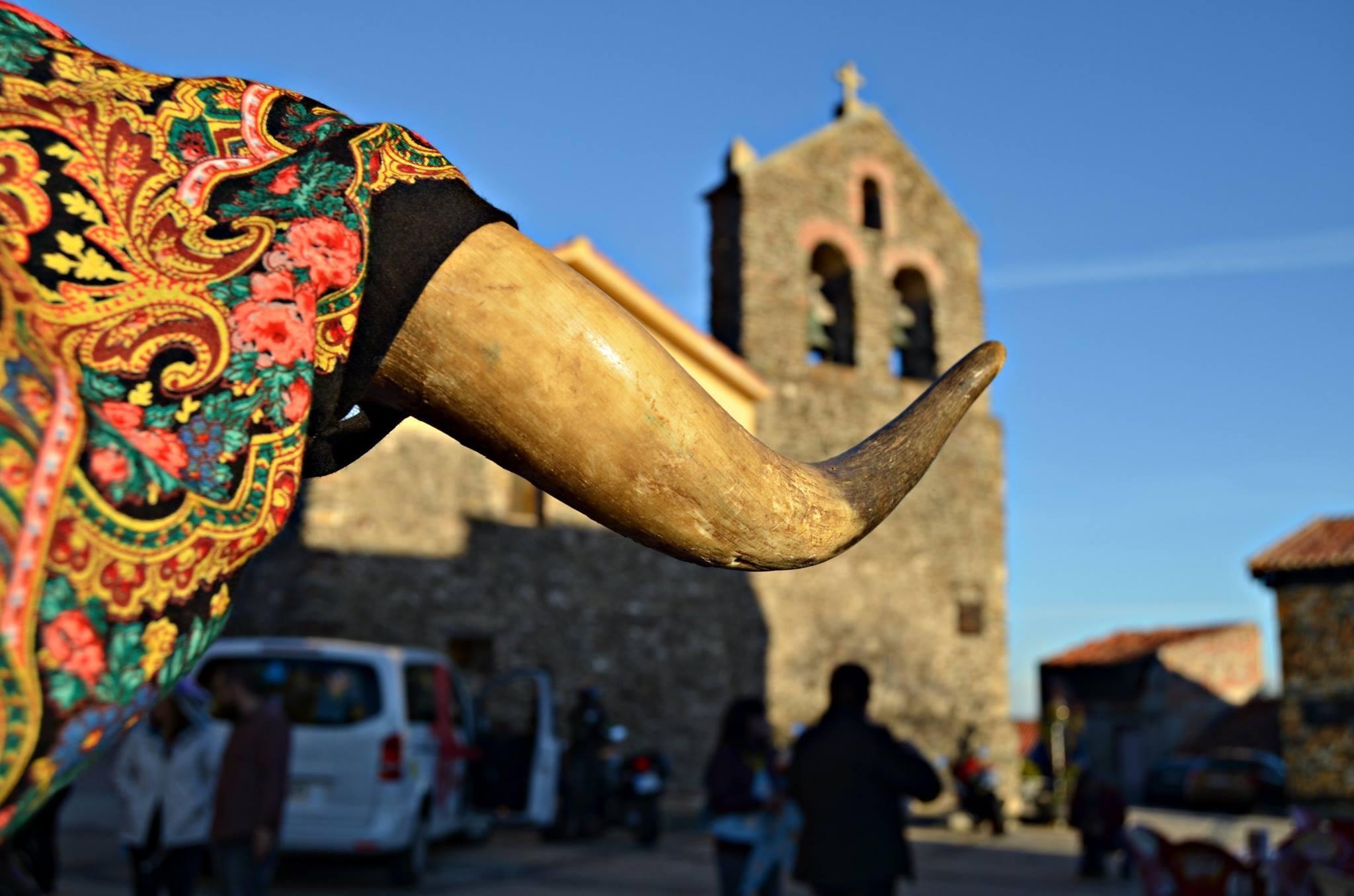 Vaquilla. Ayuntamiento de El Atazar