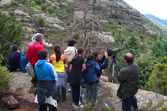 propuestas-turisticas-aves-paisajes-sierra-rincon
