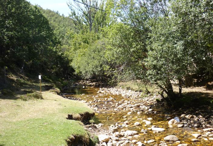 Reserva de la Biosfera Sierra del Rincón-rio jarama