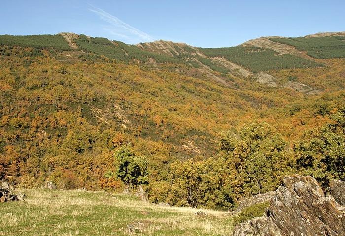 RReserva de la Biosfera Sierra del Rincón-puebla