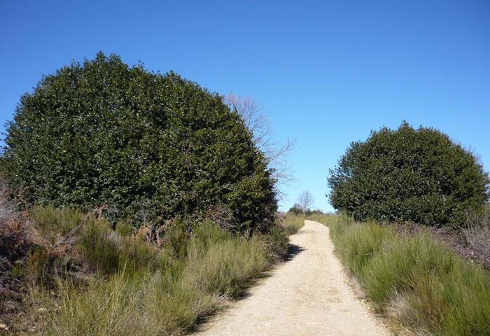 route through the acebeda of robregordo