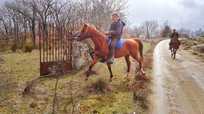 Pasea a caballo en Sierra Norte de Madrid con amigos o en pareja