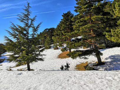 The best secrets of winter of the Sierra Norte de Madrid