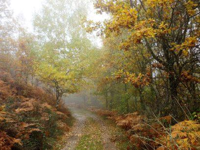 Somosierra: Discover the warlike past of the Sierra Norte de Madrid