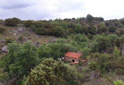 Hiking in the Sierra Norte de Madrid. Red local Carpetania I